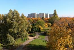 Jesień w Parku Wł. Czarneckiego, Winogrady