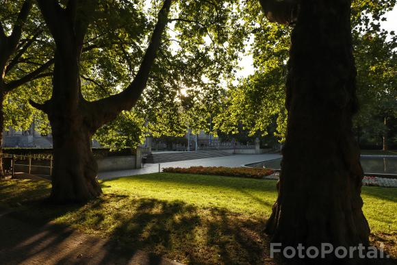 Park Adama Mickiewicza latem