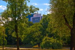 Park Imienia Karola Marcinkowskiego, Sierpień 2021