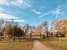 listopadowa jesien w Parku Jana Kasprowicza