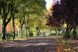 Październik w Parku Wł Czarneckiego, Os Przyjaźni