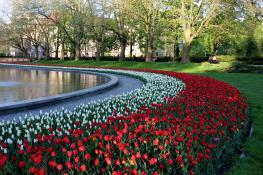 Park imienia Adama Mickiewicza