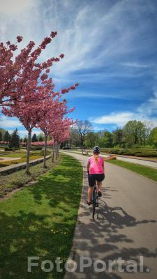 Rowerowa wiosna na Cytadeli