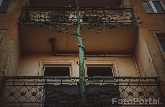 Drzewne balkony