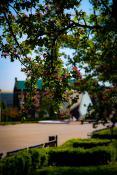 Wiosenny Plac Wolności