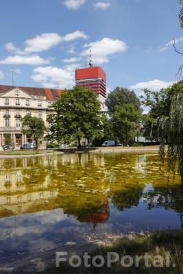 Park im. Karola Marcinkowskiego
