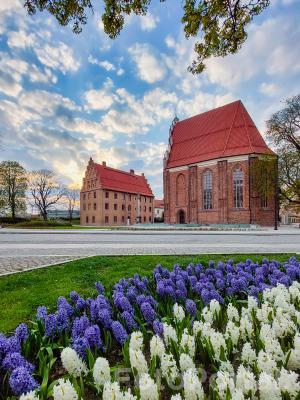 Psałteria i  Kościół pw. NMP in Summo