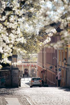 Wiosna na Starym Mieście