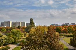 Park Wł Czarneckiego w jesiennych kolorach