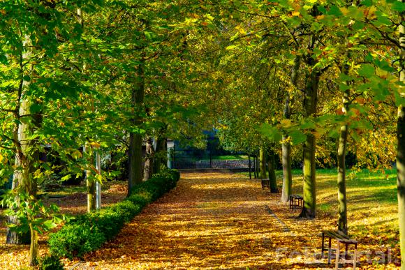 Jesień na UAM :)