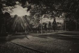 Parkowe popołudnie :)