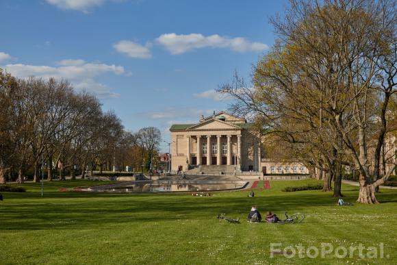Wiosna w Parku Mickiewicza