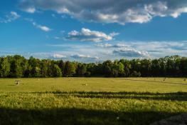 Panorama Cytadeli
