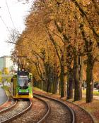 jesień w Poznaniu