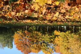 Jesiennie na Os Przyjaźni