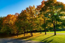 Jesień na Cytadeli