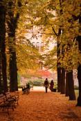 Ogród Zamkowy, ul. Święty Marcin 80/82, Poznań