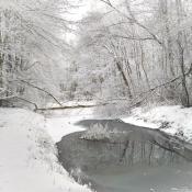 Zima w miescie