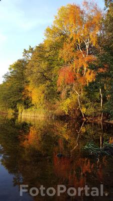 Jesień nad Rusałką