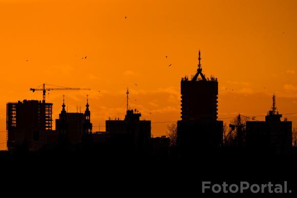 Pomarańczowy Poznań