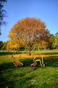 Jesienny Strzeszynek