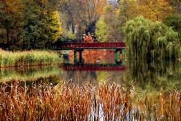 Park Sołacki