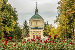 Kościół za różami
