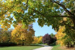 Jesiennie na Cytadeli