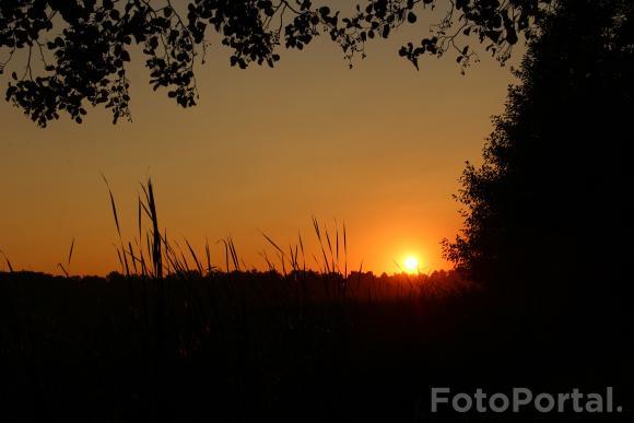 Wieczór nad Rusałką