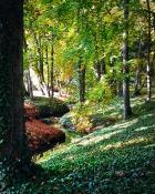 Lato w jesieni