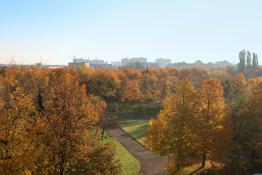 Słonecznie w parku Wł Czarneckiego na Winogradach