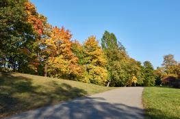 Jesienna Cytadela