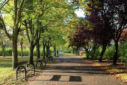 Październik w parku