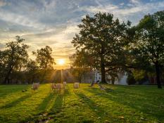 Babie lato | Park Dąbrowskiego