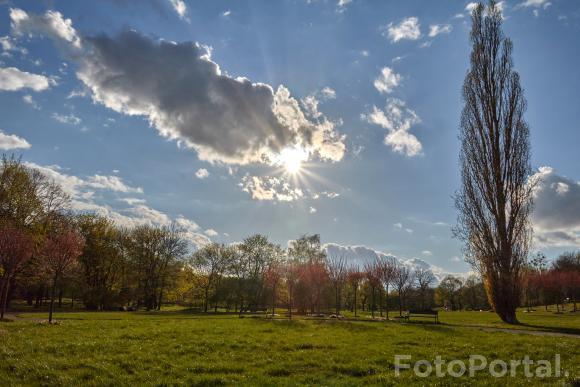Trochę wiosennego słońca na Cytadeli