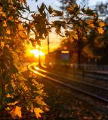 Przystanek jesień