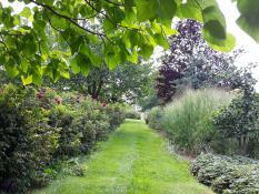 Ogród w Poznaniu