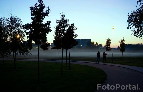 Mgła nad uroczyskiem
