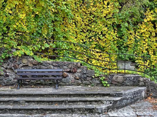 Jesień w Starym Zoo.