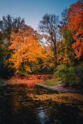 Łazarska jesień w pełni
