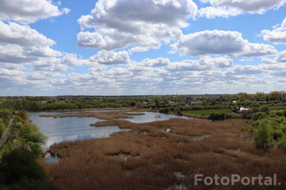 Widok z wieży | Park Szachty
