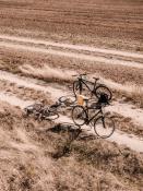 Wycieczka rowerowa przez pola