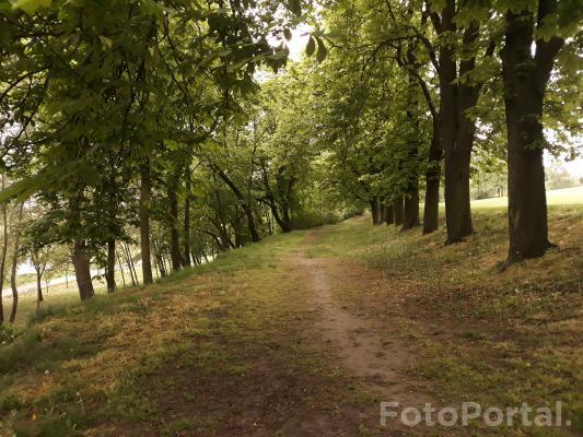 Park Szelągowski