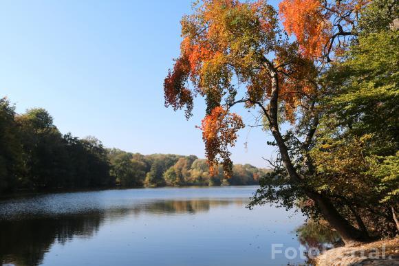 Jesiennie nad Rusałką