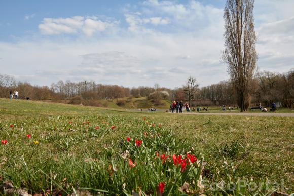 Wiosenna niedziela na Cytadeli
