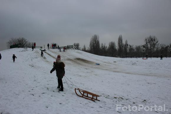 Park Kasprowicza w zimowej scenerii