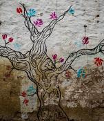 Drzewo z podwórka przy Taczaka