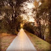 Droga do Posnani