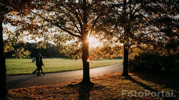 Park Cytadela, al. Armii Poznań