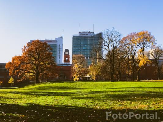 Park J. H. Dąbrowskiego